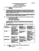 Information system briefing essay