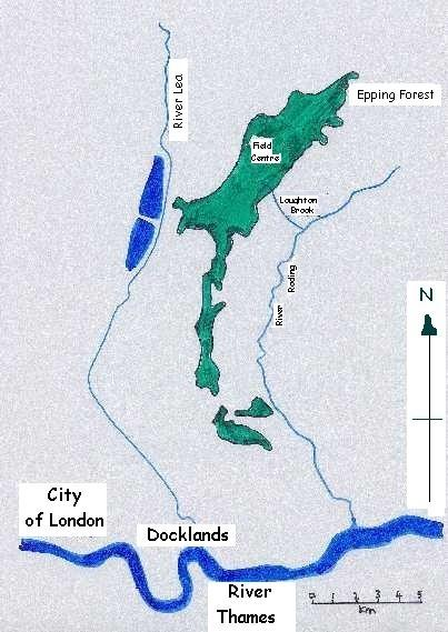 Why the width of a river might decrease downstream?HELP HELP!!!!?