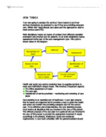 Nursing care plan essay introduction