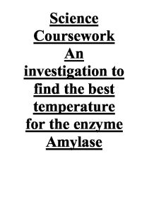 Enzyme Amylase' Function