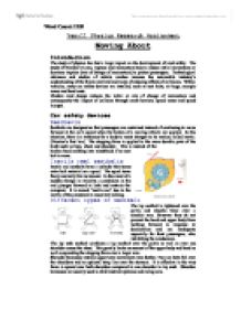 physics of road safety Year 10 physics of the car topic hw 1 hw 2 hw 3 hw 4 assessment task revision physics of cars car safety features from office of road safety, western.
