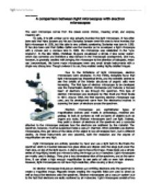 Light and electron microscopes essay