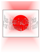 how is chinas economy growing so crazy and how it affects the world as well as china essay