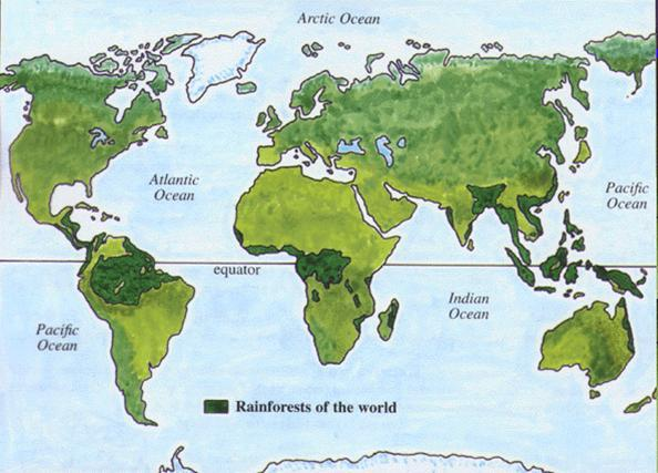 How the management of the amazon rainforest is being affected gcse the rain forests are in a broken belt along the equator the countries which the rainforests are on are brazil congo malaysia thailand and costa rica gumiabroncs Choice Image