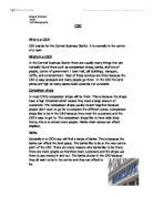 central business district investigation essay