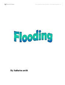 Flooding Near Kea West Florida SANDRP   WordPress com