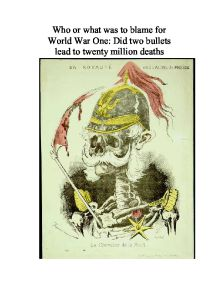 who was to blame for the first world war essay This happened on sunday 28th june 1914, not long before the first world war  began in this essay i intend to find out if germany really was to blame for.