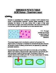 Osmosis in potatoes coursework help