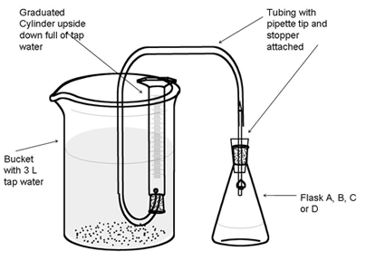 gcse chemistry limestone chips coursework