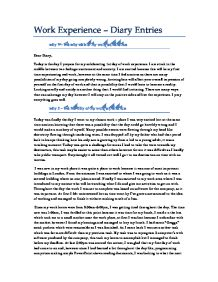 Placement experience essay