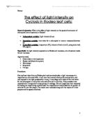 Photosynthesis in Elodea Lab Essay