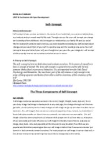 how to write an essay on self concept  mistyhamel self concept essay masculinity