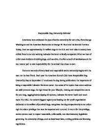 Editorial essay example hepatitze