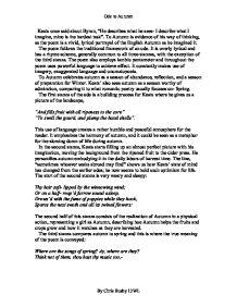 Consciousness essay